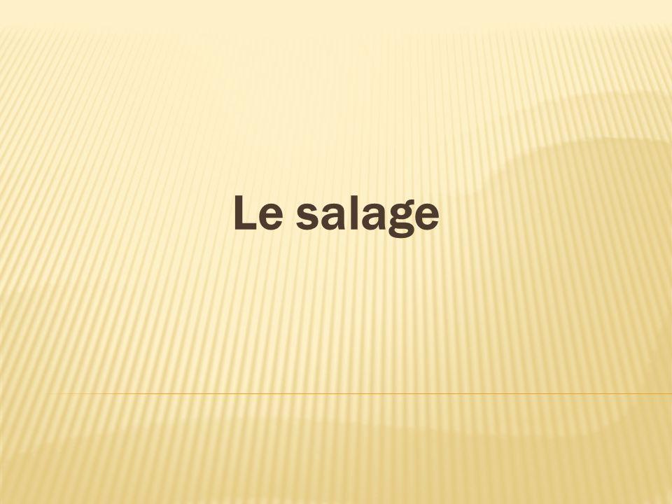 Le salage
