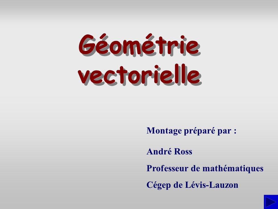Montage préparé par : André Ross Professeur de mathématiques Cégep de Lévis-Lauzon Géométrie vectorielle Géométrie vectorielle