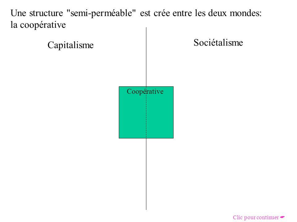 Une structure semi-perméable est crée entre les deux mondes: la coopérative Coopérative Capitalisme Sociétalisme Clic pour continuer
