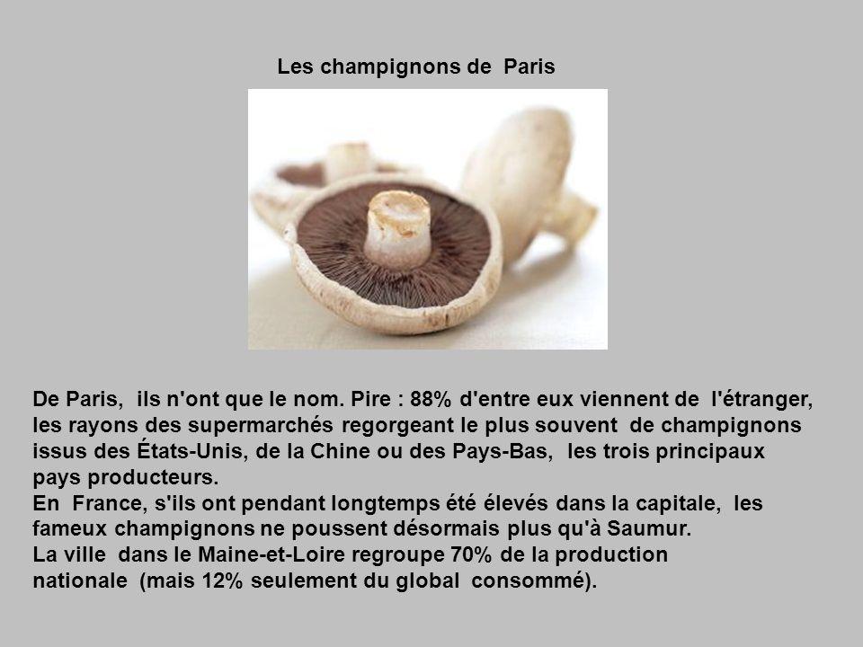 La charcuterie corse Elle est présentée comme un des plus purs produits du terroir français.