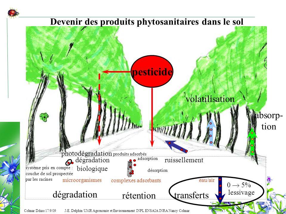 J-E. Delphin UMR Agronomie et Environnement INPL ENSAIA INRA Nancy Colmar Colmar Ddass 17/9/09 pesticide système pris en compte : couche de sol prospe