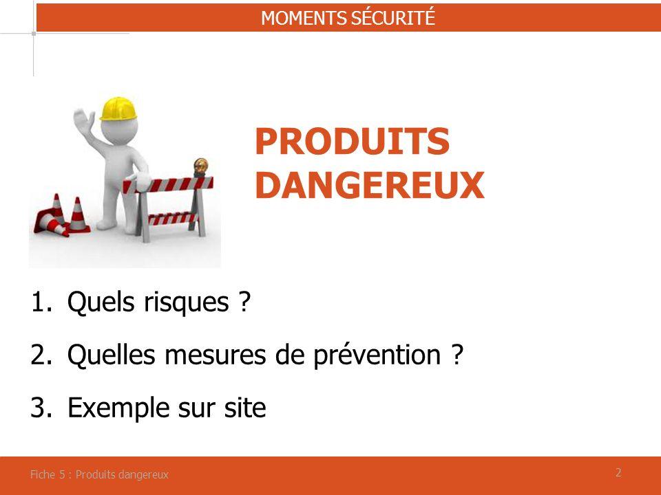 22 PRODUITS DANGEREUX MOMENTS SÉCURITÉ Fiche 5 : Produits dangereux 1.Quels risques .