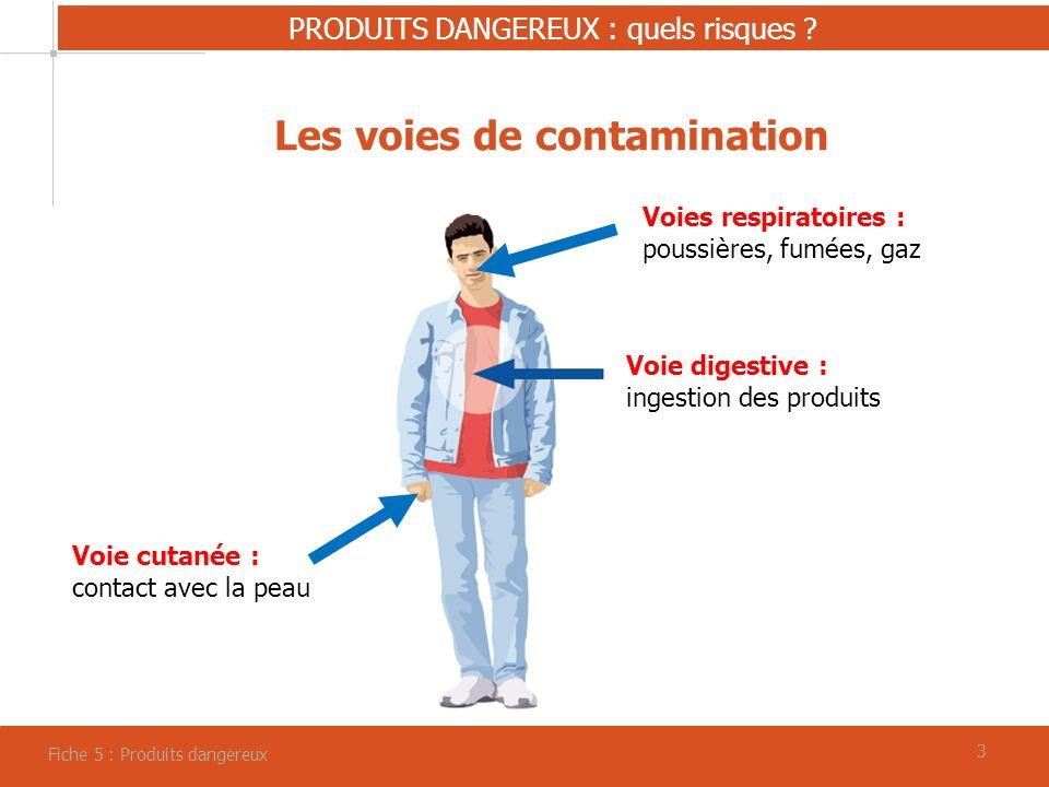 33 PRODUITS DANGEREUX : quels risques .