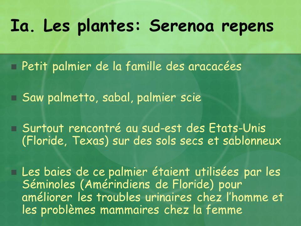 Ia. Les plantes: Serenoa repens Petit palmier de la famille des aracacées Saw palmetto, sabal, palmier scie Surtout rencontré au sud-est des Etats-Uni