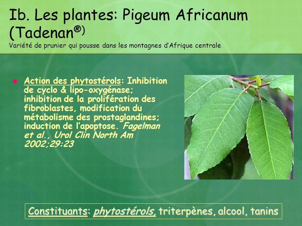 Ib. Les plantes: Pigeum Africanum (Tadenan ®) Variété de prunier qui pousse dans les montagnes dAfrique centrale Action des phytostérols: Inhibition d