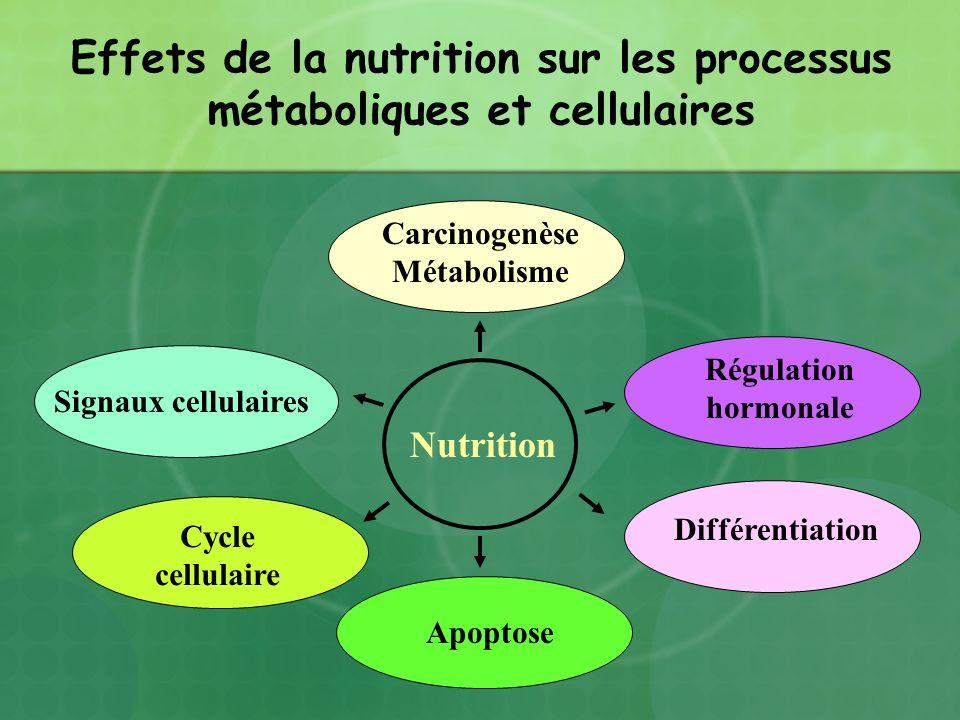Effets de la nutrition sur les processus métaboliques et cellulaires Carcinogenèse Métabolisme Régulation hormonale Signaux cellulaires Apoptose Nutri