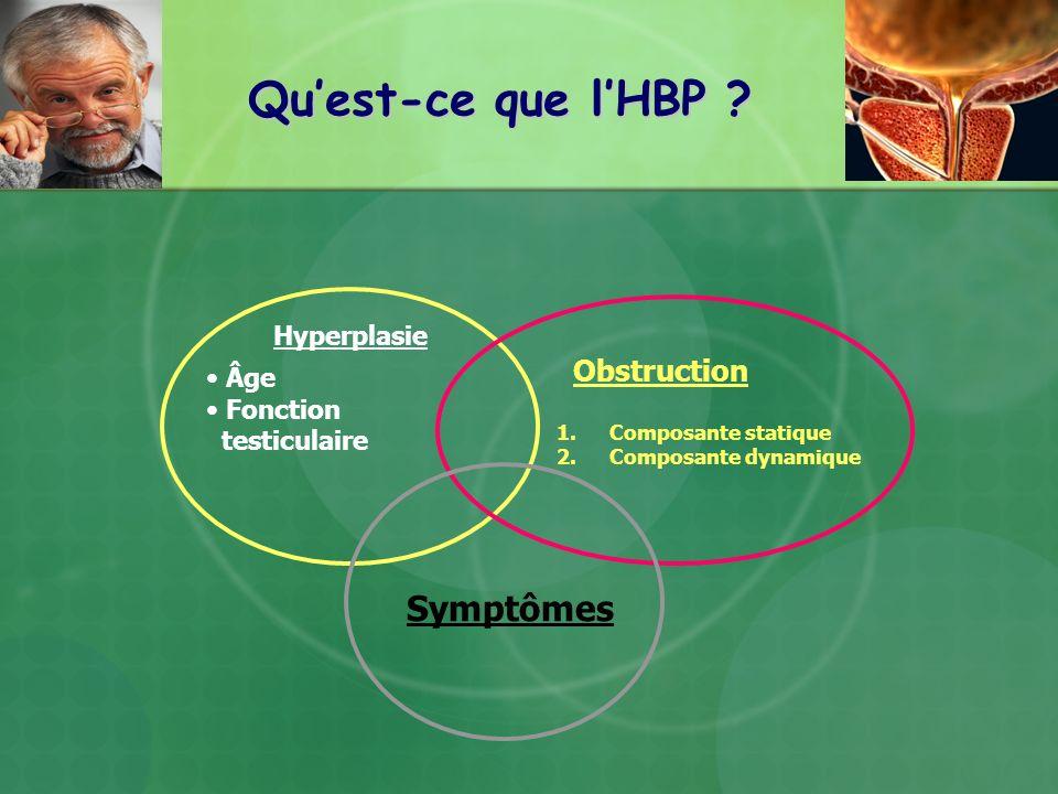 Quest-ce que lHBP ? Hyperplasie Âge Fonction testiculaire Symptômes Obstruction 1.Composante statique 2.Composante dynamique