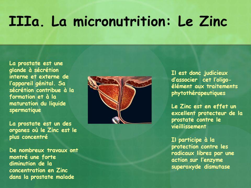 IIIa. La micronutrition: Le Zinc La prostate est une glande à sécrétion interne et externe de lappareil génital. Sa sécrétion contribue à la formation