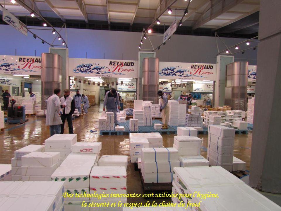 La présentation sur les étalages met en valeur la fraîcheur et laspect des produits sélectionnés avec une attention rigoureuse.