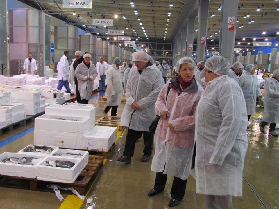 Rungis le plus grand plateau de fromages au monde