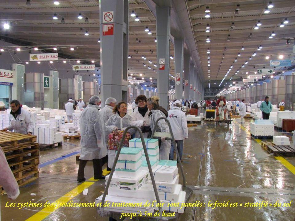 Près de 300 000 tonnes de produits carnés transitent par le marché dintérêt national de Rungis chaque année