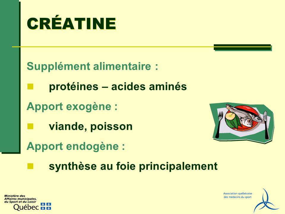 CRÉATINE Supplément alimentaire : protéines – acides aminés Apport exogène : viande, poisson Apport endogène : synthèse au foie principalement