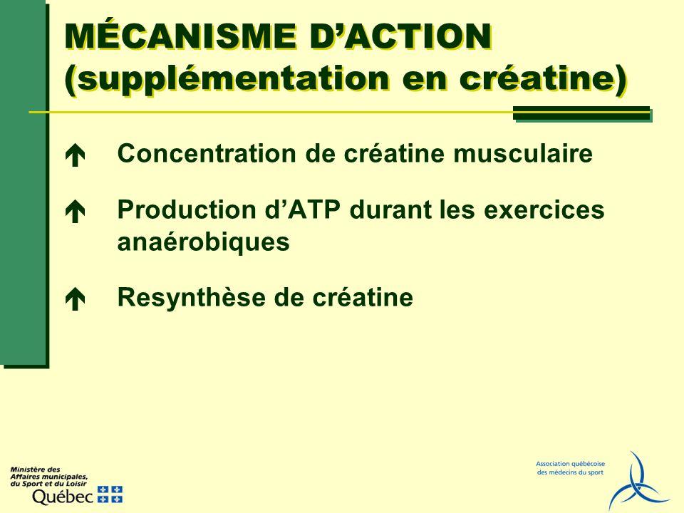 MÉCANISME DACTION (supplémentation en créatine) Concentration de créatine musculaire Production dATP durant les exercices anaérobiques Resynthèse de c
