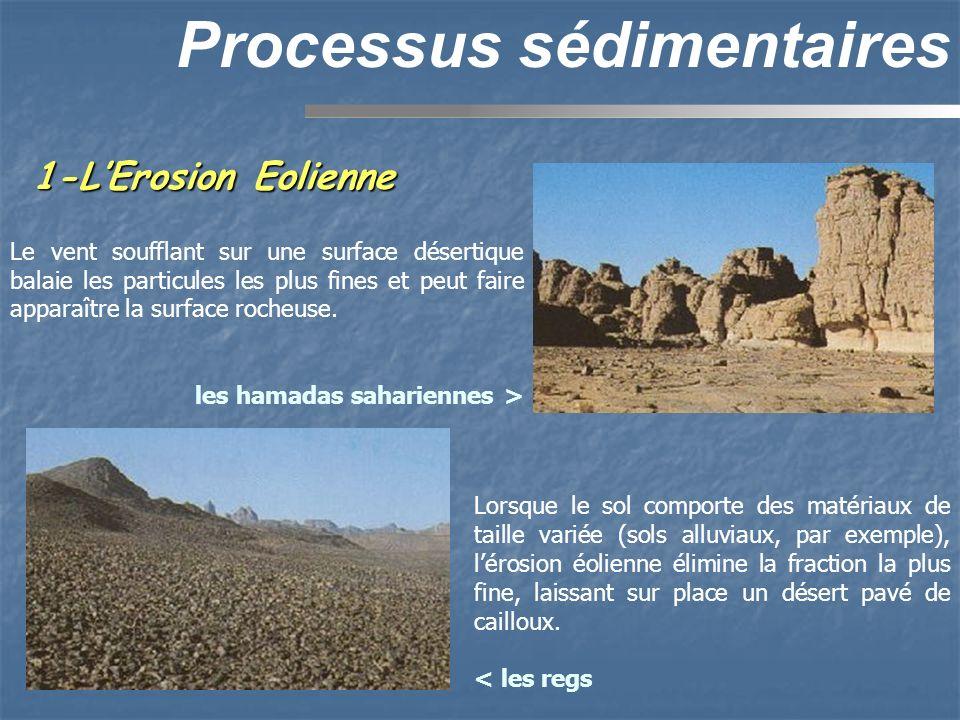 1-LErosion Eolienne Processus sédimentaires Le vent soufflant sur une surface désertique balaie les particules les plus fines et peut faire apparaître