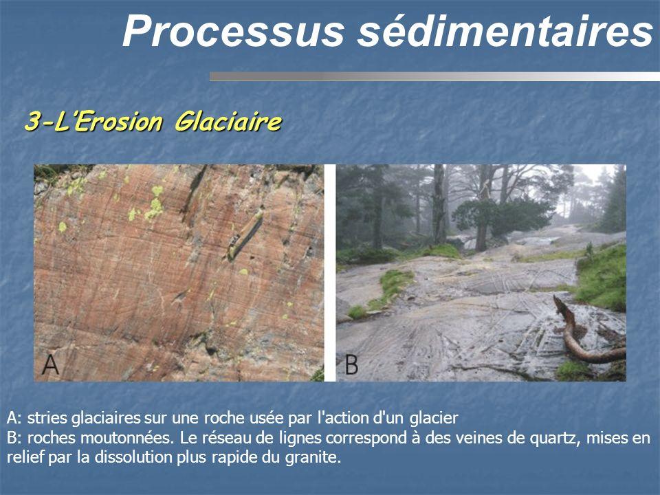 3-LErosion Glaciaire Processus sédimentaires A: stries glaciaires sur une roche usée par l'action d'un glacier B: roches moutonnées. Le réseau de lign