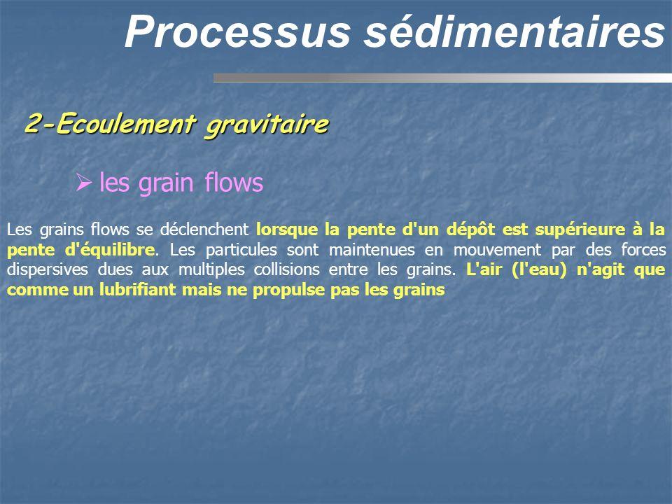 2-Ecoulement gravitaire Processus sédimentaires les grain flows Les grains flows se déclenchent lorsque la pente d'un dépôt est supérieure à la pente