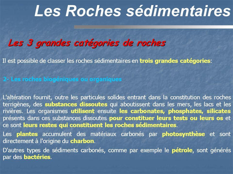 Les 3 grandes catégories de roches Les Roches sédimentaires 2- Les roches biogéniques ou organiques L'altération fournit, outre les particules solides