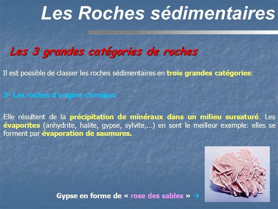 Les 3 grandes catégories de roches Les Roches sédimentaires Il est possible de classer les roches sédimentaires en trois grandes catégories: 3- Les ro