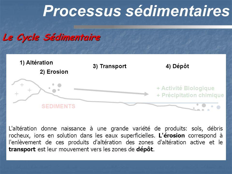 Processus sédimentaires Le Cycle Sédimentaire + + + + 1) Altération 3) Transport4) Dépôt SEDIMENTS 5) Diagenèse ROCHE SEDIMENTAIRE 5) Tectonique + Act