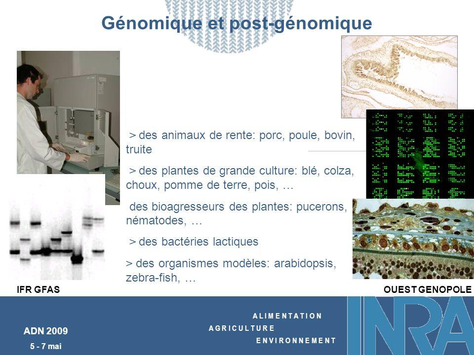 A L I M E N T A T I O N A G R I C U L T U R E E N V I R O N N E M E N T ADN 2009 5 - 7 mai Génomique et post-génomique > des animaux de rente: porc, p