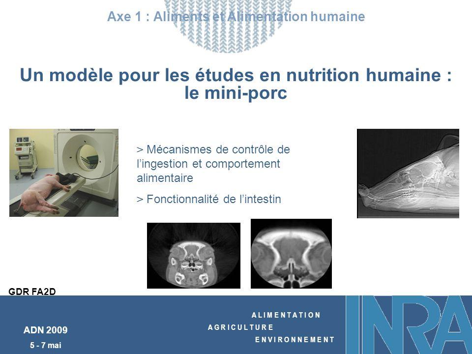 A L I M E N T A T I O N A G R I C U L T U R E E N V I R O N N E M E N T ADN 2009 5 - 7 mai Un modèle pour les études en nutrition humaine : le mini-porc Axe 1 : Aliments et Alimentation humaine GDR FA2D > Mécanismes de contrôle de lingestion et comportement alimentaire > Fonctionnalité de lintestin
