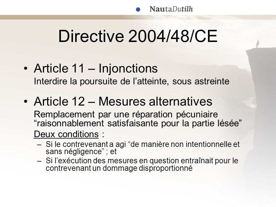 Directive 2004/48/CE Article 11 – Injonctions Interdire la poursuite de latteinte, sous astreinte Article 12 – Mesures alternatives Remplacement par u