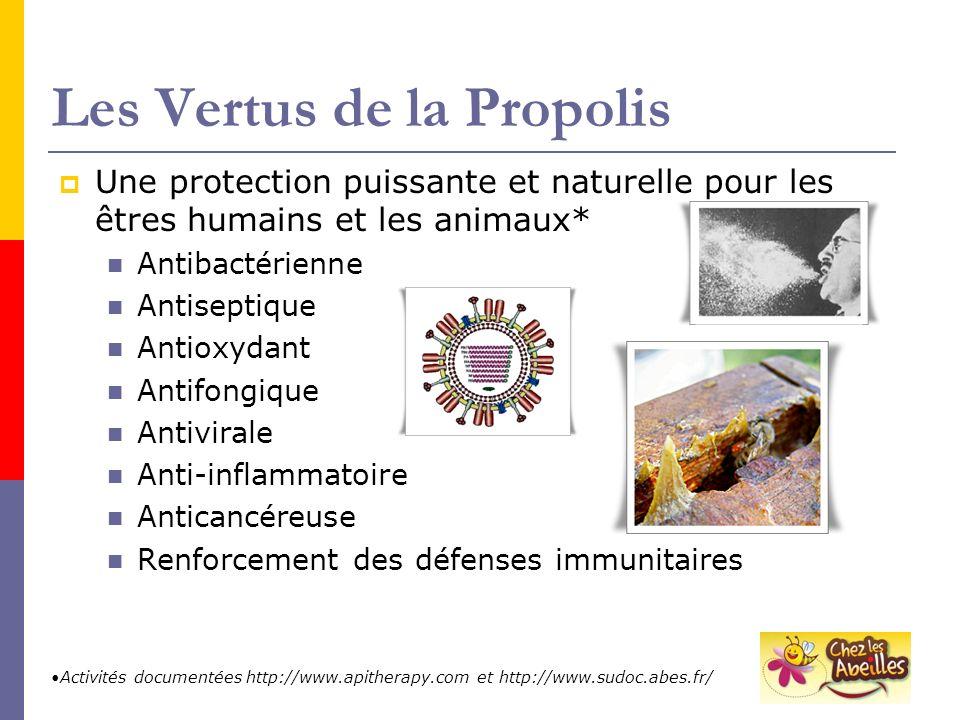 Les Vertus de la Propolis Une protection puissante et naturelle pour les êtres humains et les animaux* Antibactérienne Antiseptique Antioxydant Antifo