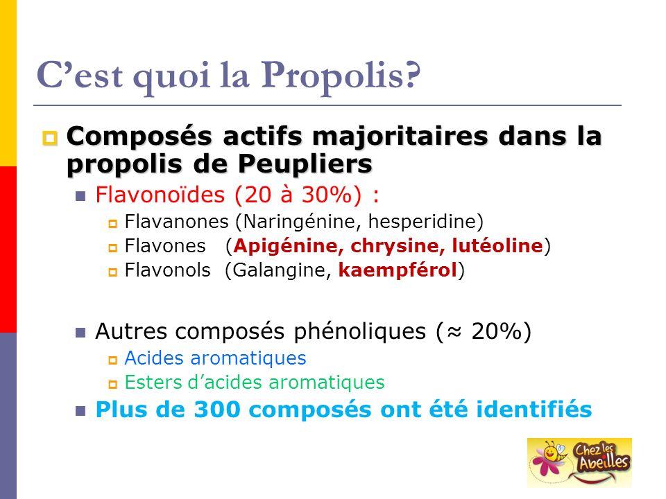 Cest quoi la Propolis? Composés actifs majoritaires dans la propolis de Peupliers Composés actifs majoritaires dans la propolis de Peupliers Flavonoïd