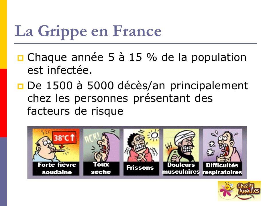 La Grippe en France Chaque année 5 à 15 % de la population est infectée. De 1500 à 5000 décès/an principalement chez les personnes présentant des fact