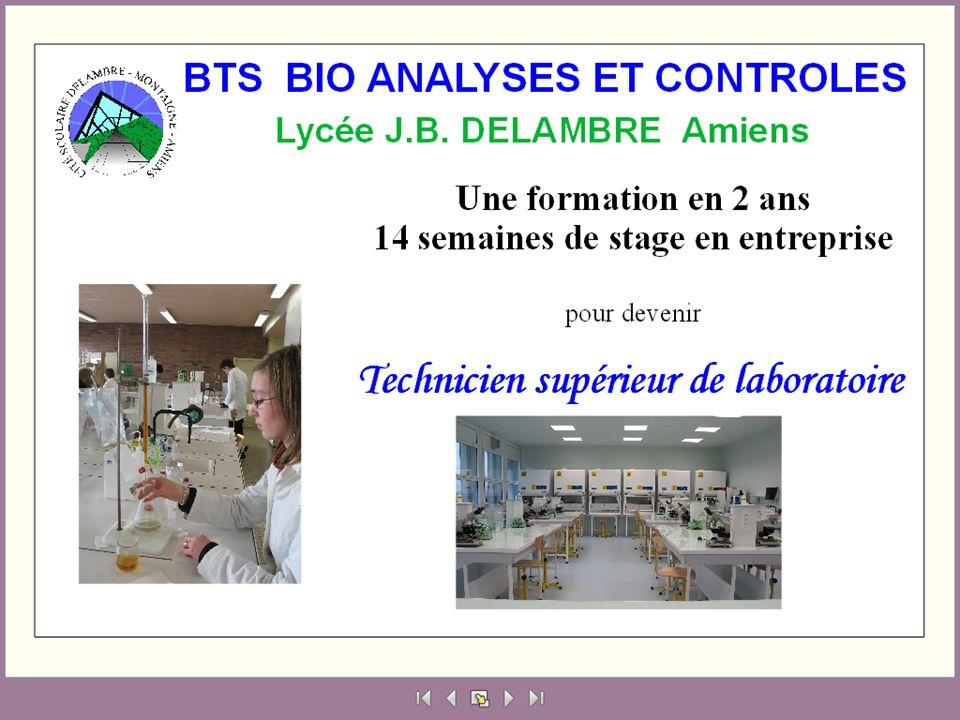 Identification de Bactéries Levures Moisissures Identification de Bactéries Levures Moisissures