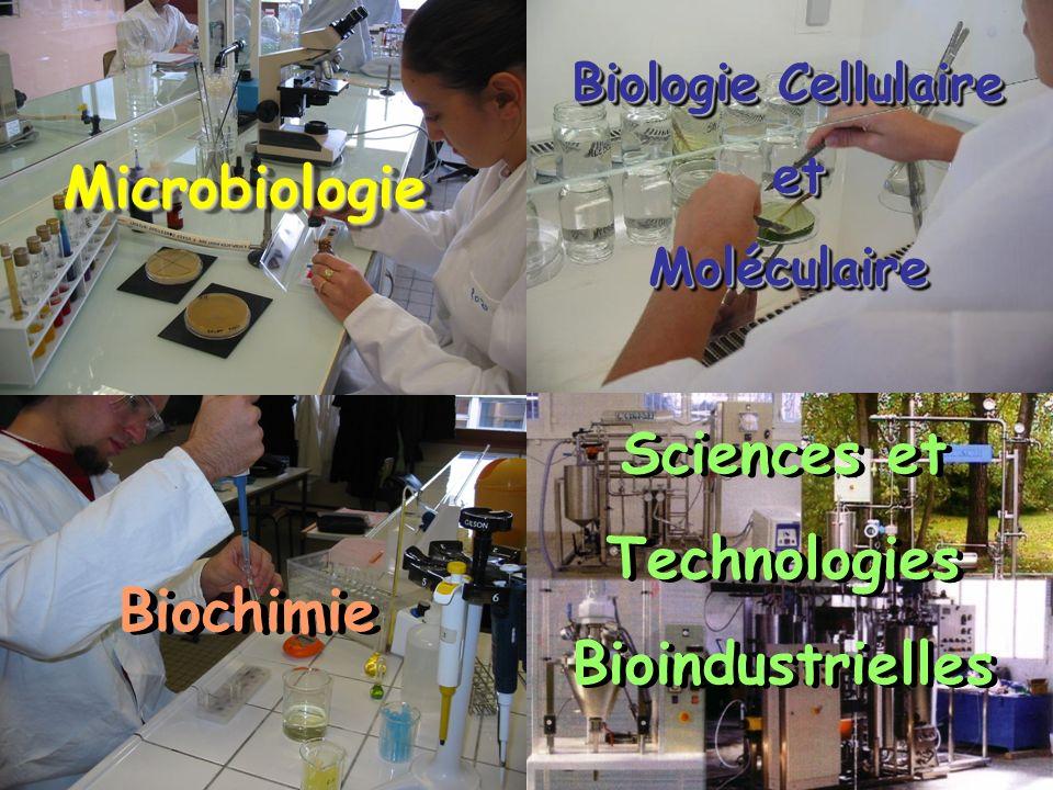 MicrobiologieMicrobiologie Biologie Cellulaire et etMoléculaire Biologie Cellulaire et etMoléculaire Biochimie Sciences et Technologies Bioindustriell