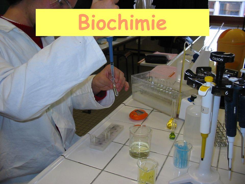 Sciences et Technologies Bioindustrielles