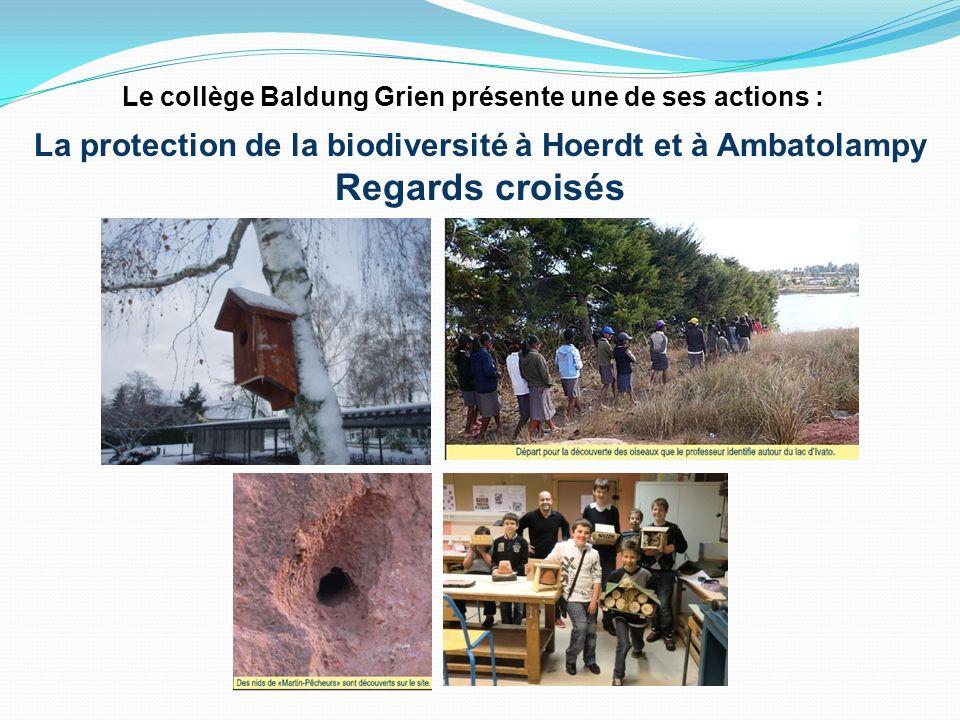 La protection de la biodiversité à Hoerdt et à Ambatolampy Regards croisés Le collège Baldung Grien présente une de ses actions :