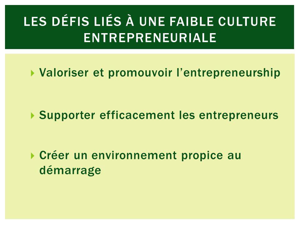 Supporter efficacement les entrepreneurs Créer un environnement propice au démarrage Valoriser et promouvoir lentrepreneurship LES DÉFIS LIÉS À UNE FAIBLE CULTURE ENTREPRENEURIALE