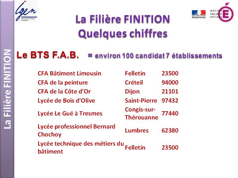 La Filière FINITION Quelques chiffres Le BTS F.A.B. = environ 100 candidat 7 établissements