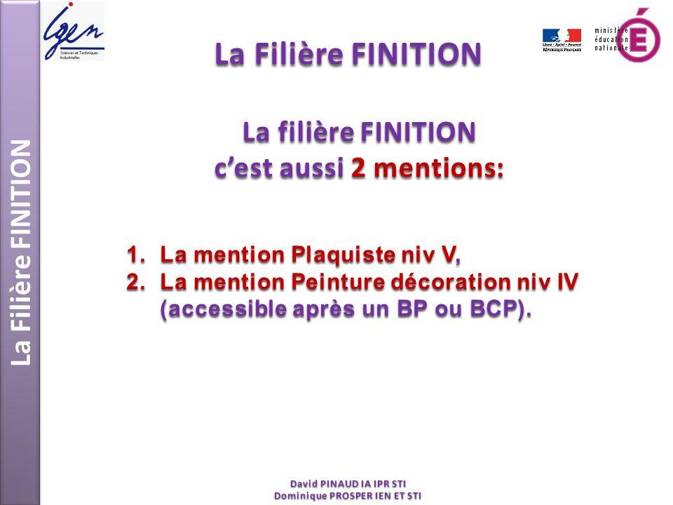 La Filière FINITION David PINAUD IA IPR STI Dominique PROSPER IEN ET STI La filière FINITION cest aussi 2 mentions: 1.La mention Plaquiste niv V, 2.La