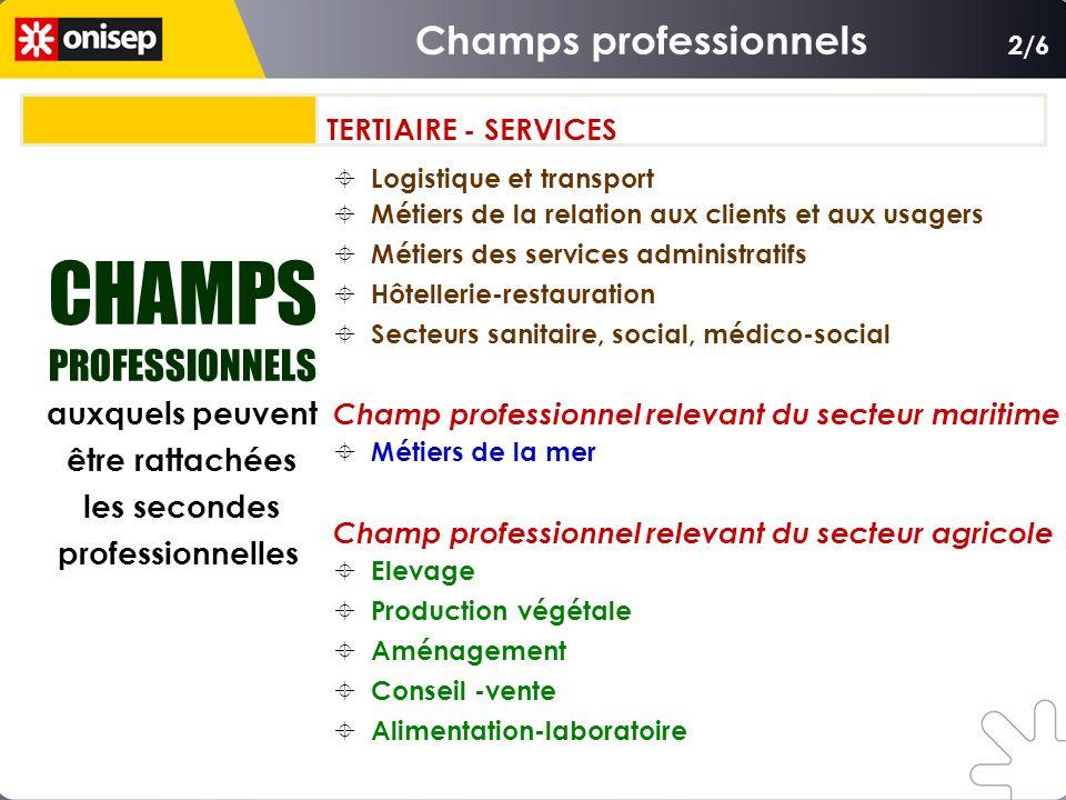 CHAMPS PROFESSIONNELS auxquels peuvent être rattachées les secondes professionnelles CHAMPS PROFESSIONNELS auxquels peuvent être rattachées les second