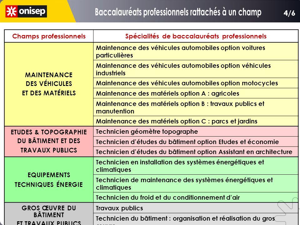 Champs professionnelsSpécialités de baccalauréats professionnels MAINTENANCE DES VÉHICULES ET DES MATÉRIELS Maintenance des véhicules automobiles opti