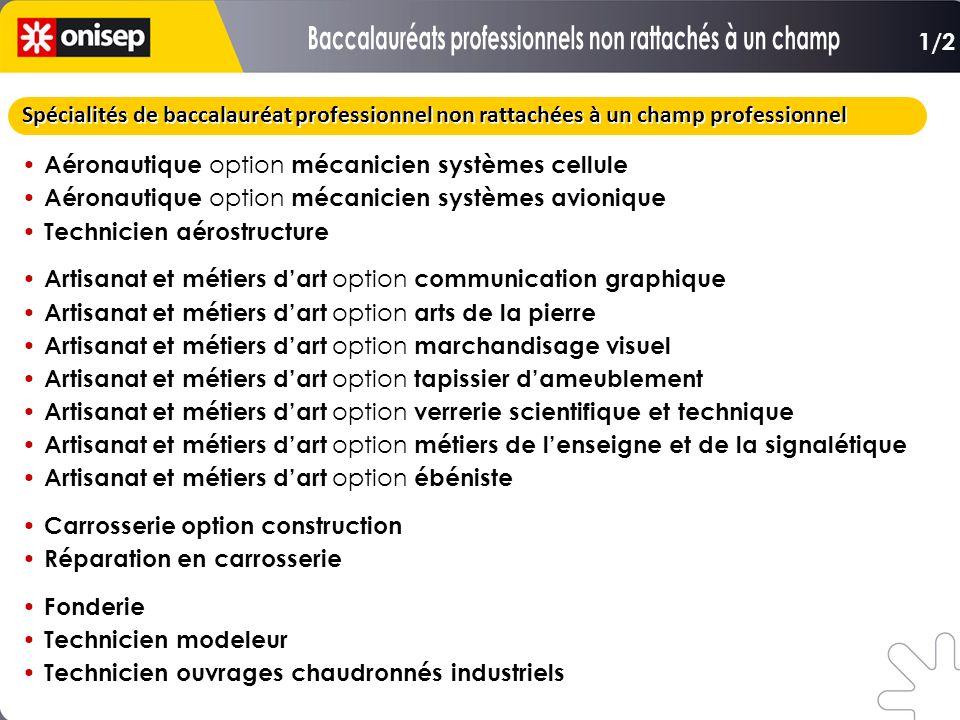Spécialités de baccalauréat professionnel non rattachées à un champ professionnel Aéronautique option mécanicien systèmes cellule Aéronautique option