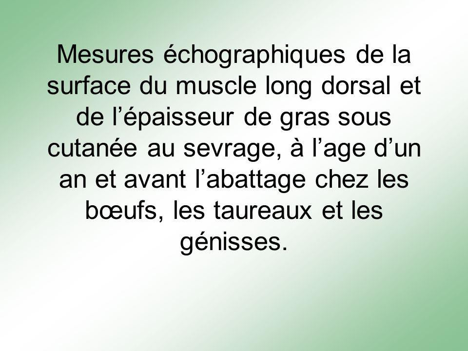 Mesures échographiques de la surface du muscle long dorsal et de lépaisseur de gras sous cutanée au sevrage, à lage dun an et avant labattage chez les bœufs, les taureaux et les génisses.