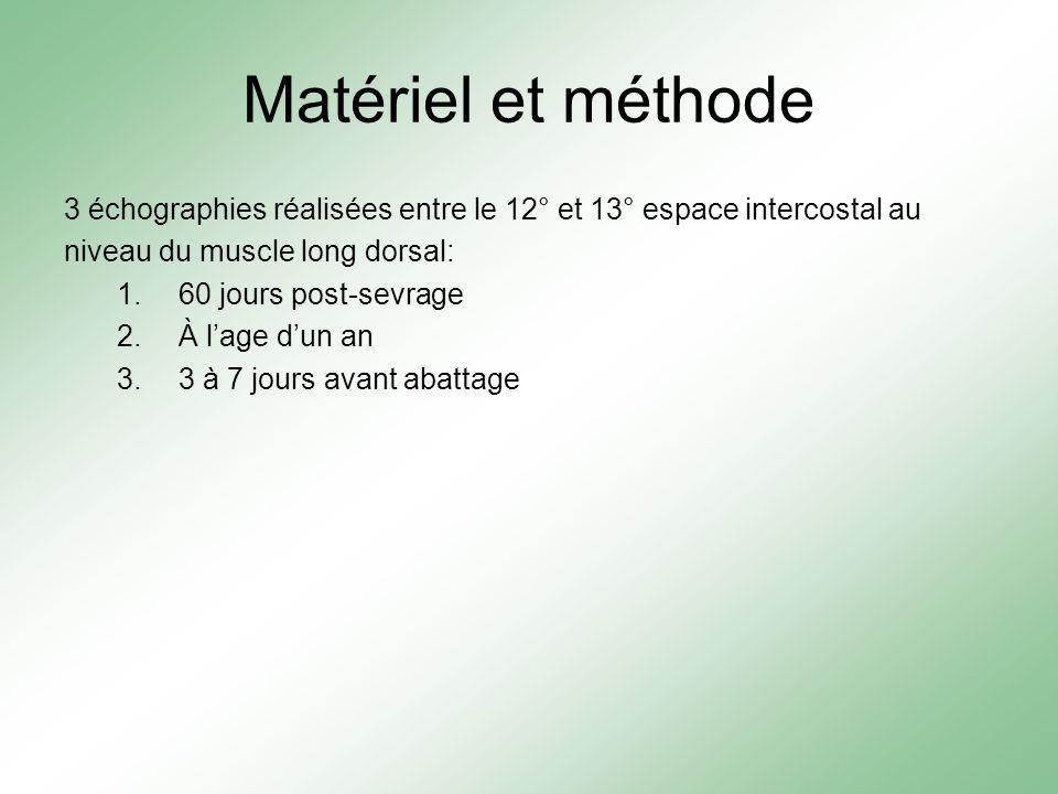 Matériel et méthode 3 échographies réalisées entre le 12° et 13° espace intercostal au niveau du muscle long dorsal: 1.60 jours post-sevrage 2.À lage dun an 3.3 à 7 jours avant abattage