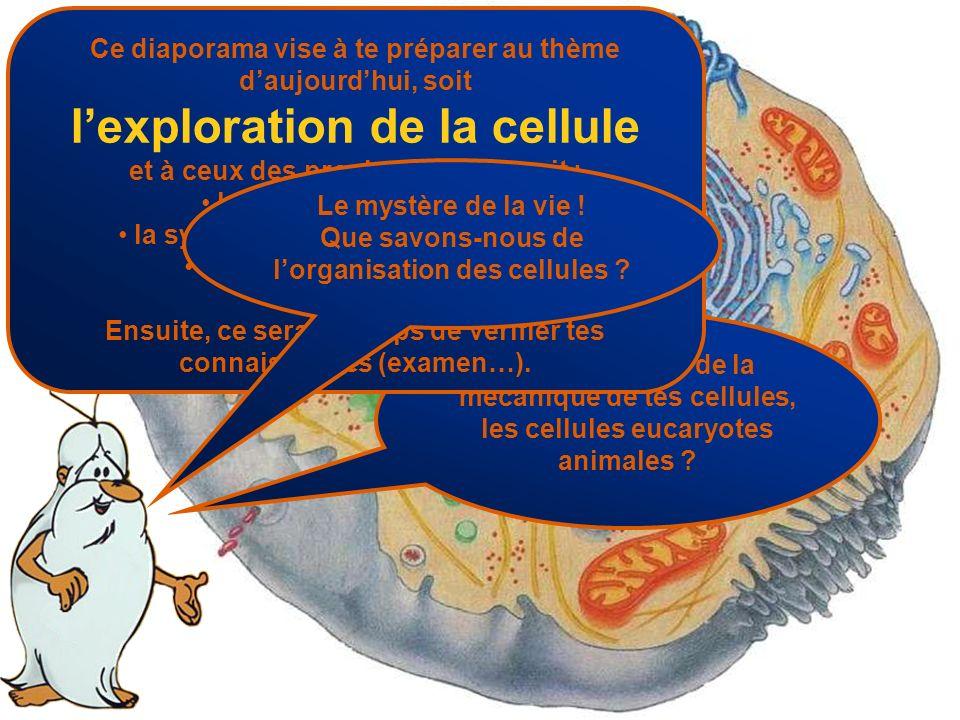 Te rappelles-tu de la mécanique de tes cellules, les cellules eucaryotes animales ? Ce diaporama vise à te préparer au thème daujourdhui, soit lexplor