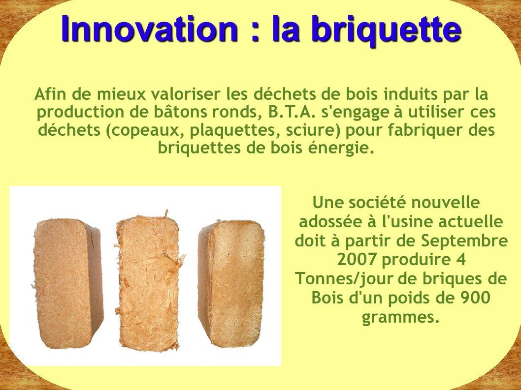 Une société nouvelle adossée à l'usine actuelle doit à partir de Septembre 2007 produire 4 Tonnes/jour de briques de Bois d'un poids de 900 grammes. I