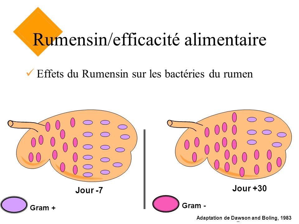 Jour -7 Jour +30 Gram + Gram - Adaptation de Dawson and Boling, 1983 Rumensin/efficacité alimentaire Effets du Rumensin sur les bactéries du rumen