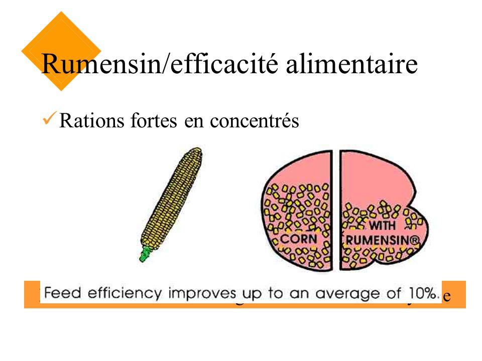 Rumensin/efficacité alimentaire Rations fortes en concentrés Lefficacité alimentaire augmente de 10 % en moyenne Maïs avec Rumensin