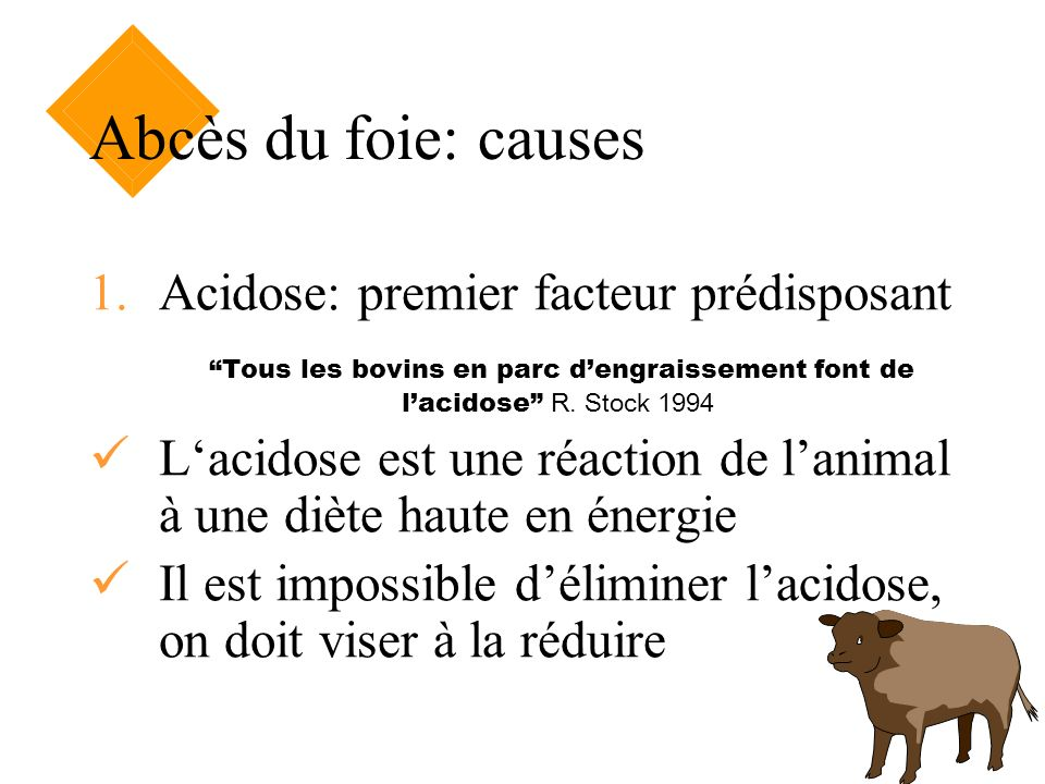 Abcès du foie: causes 1.Acidose: premier facteur prédisposant Tous les bovins en parc dengraissement font de lacidose R. Stock 1994 Lacidose est une r