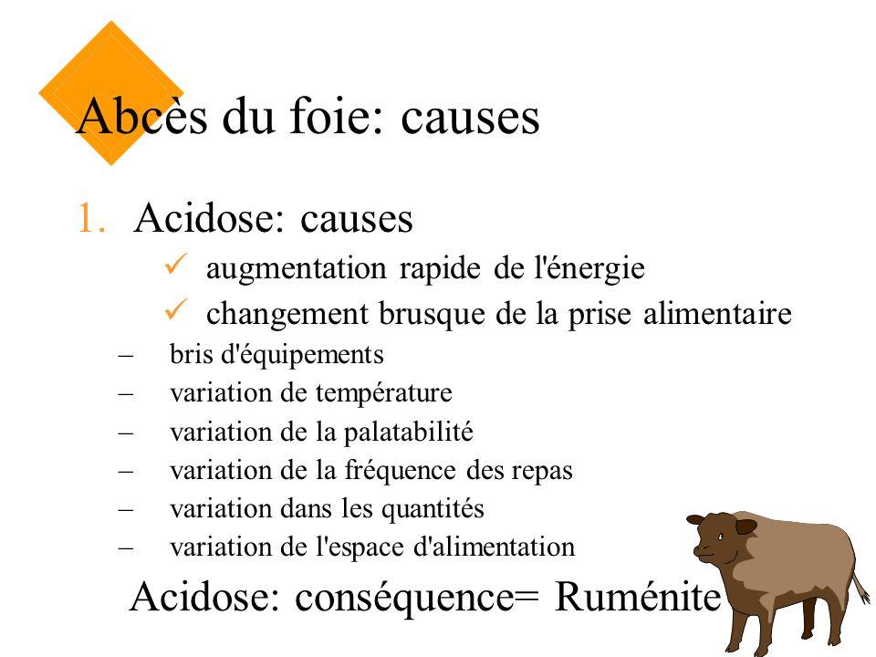 Abcès du foie: causes 1.Acidose: causes augmentation rapide de l'énergie changement brusque de la prise alimentaire –bris d'équipements –variation de