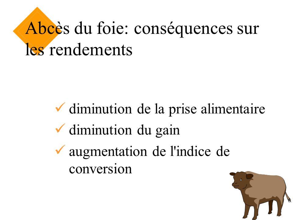 Abcès du foie: conséquences sur les rendements diminution de la prise alimentaire diminution du gain augmentation de l'indice de conversion