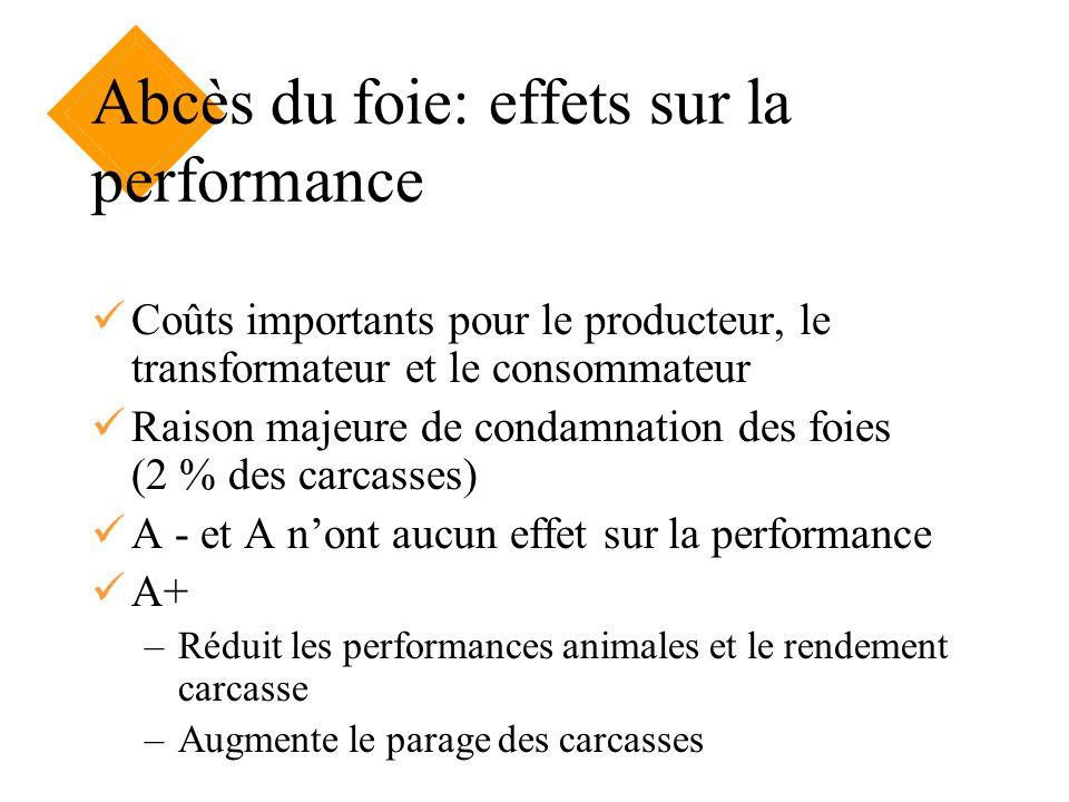 Abcès du foie: effets sur la performance Coûts importants pour le producteur, le transformateur et le consommateur Raison majeure de condamnation des