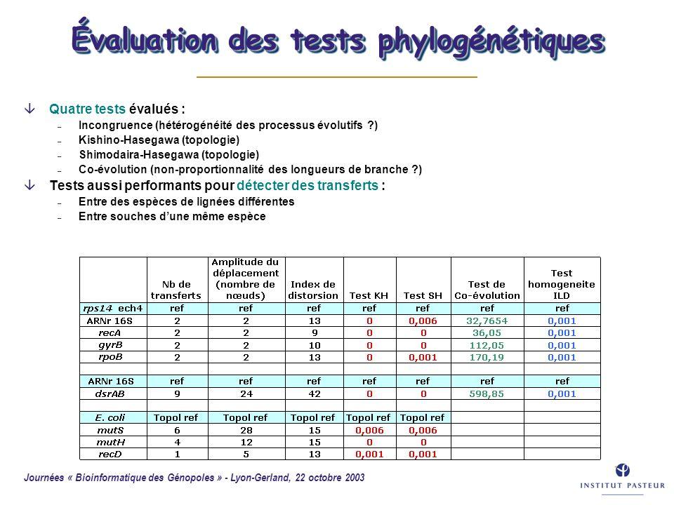 Journées « Bioinformatique des Génopoles » - Lyon-Gerland, 22 octobre 2003 52 Évaluation des tests phylogénétiques âQuatre tests évalués : – Incongrue